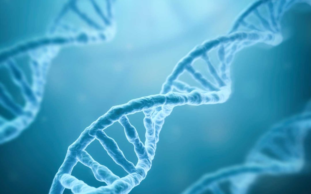 What your genes can tell you about your health.